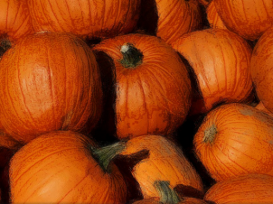 Halloween Inspired Pumpkin Spa Treatments
