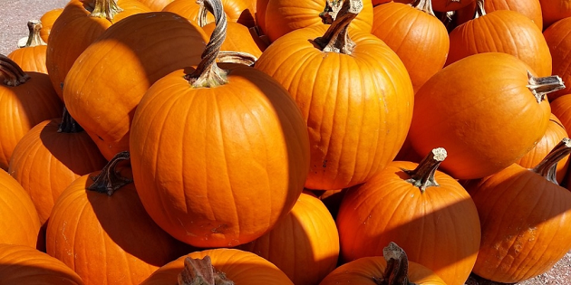 Get into the halloween spirit with this diy pumpkin face mask spas halloween is just around the corner so its time to get the pumpkin and carving knife out pumpkins make a great addition to your doorstep to get yourself solutioingenieria Images